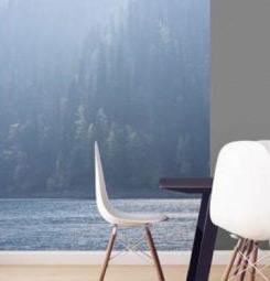 Papier peint lac dans la brume