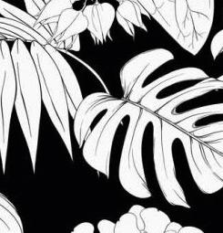 Black and white pattern wallpaper