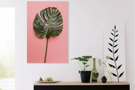 Tableau rose tropical