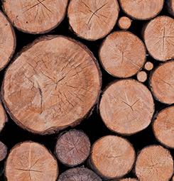 Papier peint rondins de bois