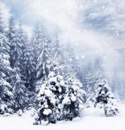 Poster paysage enneigé à Noël