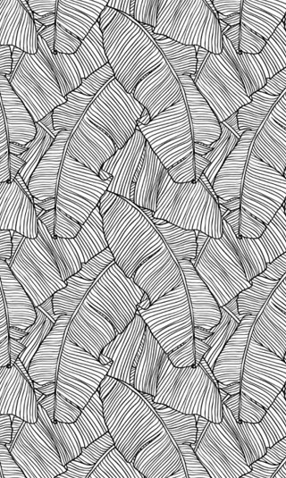Tenture murale bananier du Japon noir et blanc