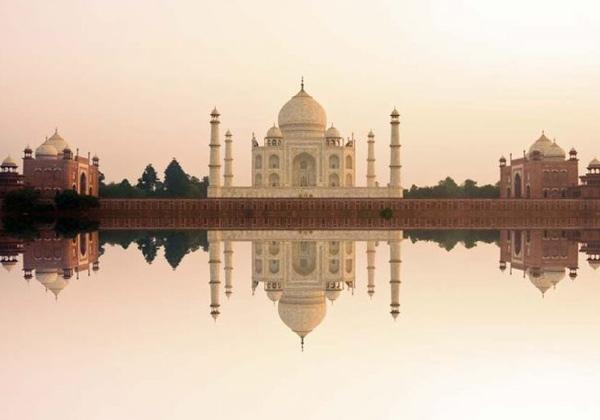 Tableau Taj Mahal rose