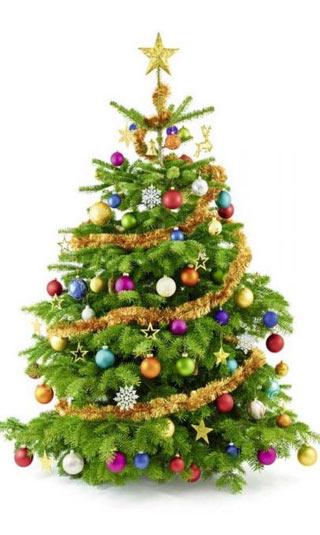 Poster sapin de Noël