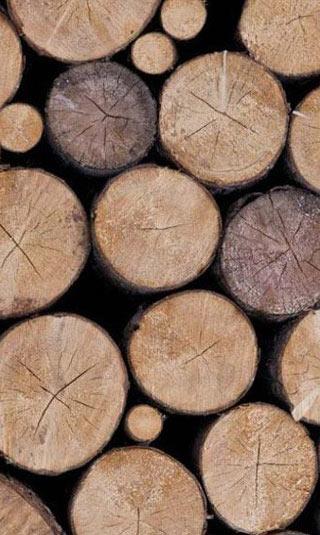 Poster rondin de bois