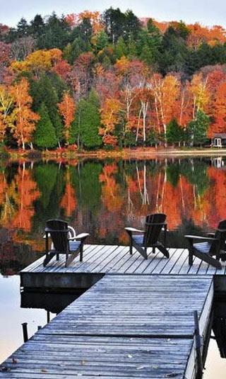 Tenture murale paysage automne