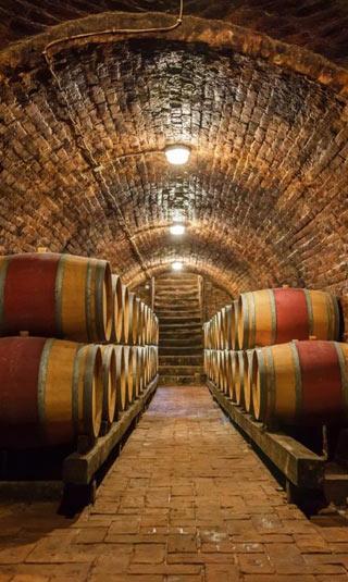Tenture cave à vin en perspective