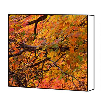 Autumn wall art