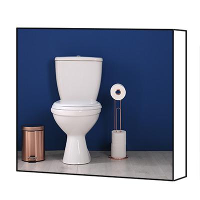 Toilet canvas print